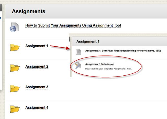 File:Blearn assignment withinstructb.jpg