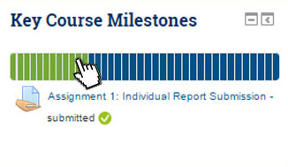 Screen shot of Moodle Progress Bar Plugin